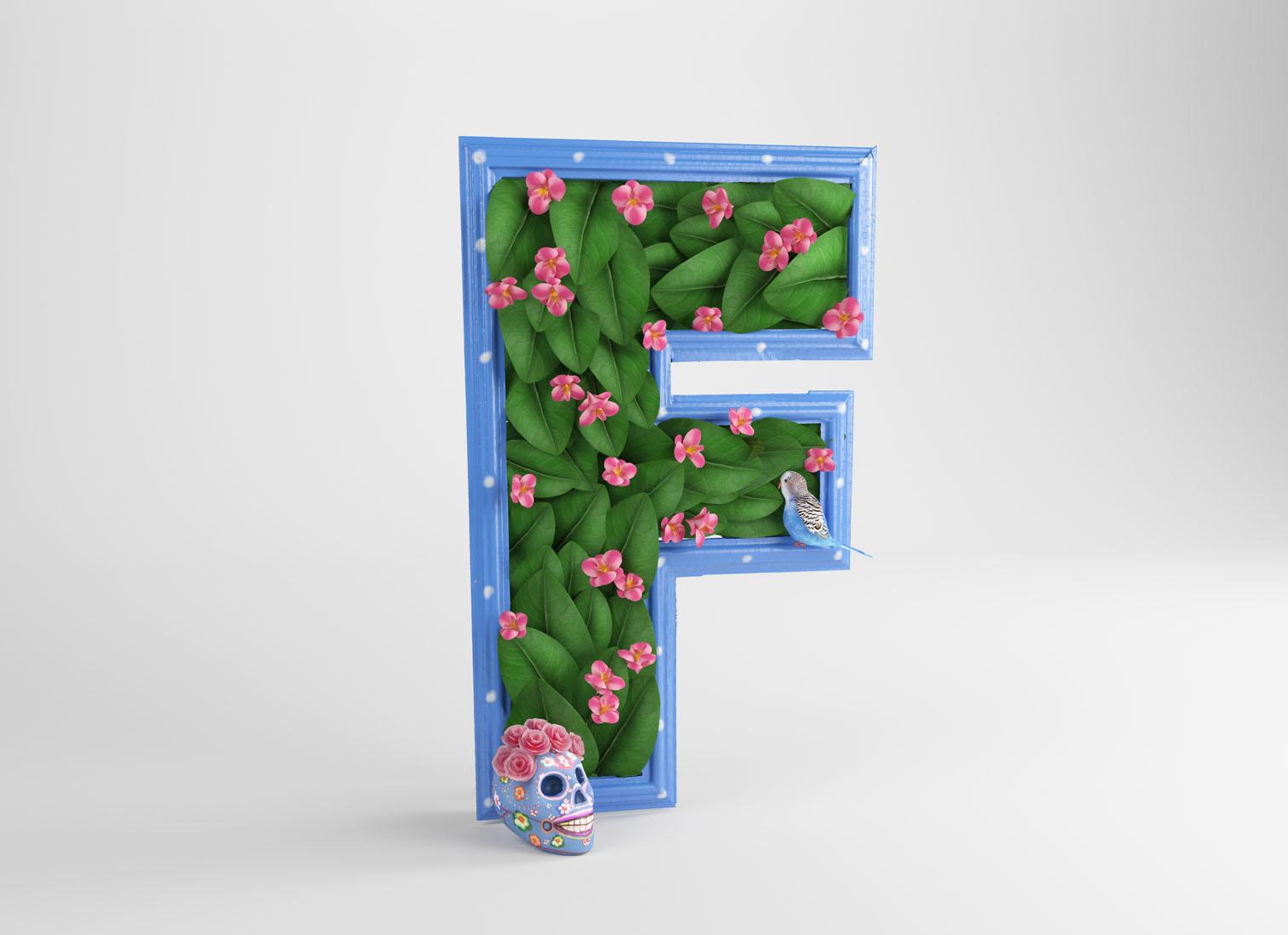 F FRIDA